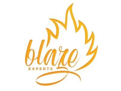 Blaze Experts
