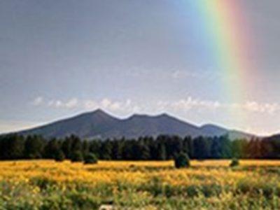 Victoria Allen - Rocky Ridge Realty